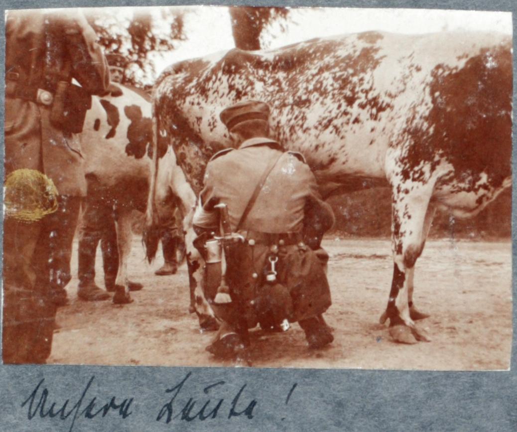 21. august 1914. Brev fra hjemmet – og rekvirering af et stykke kvæg med våbenmagt