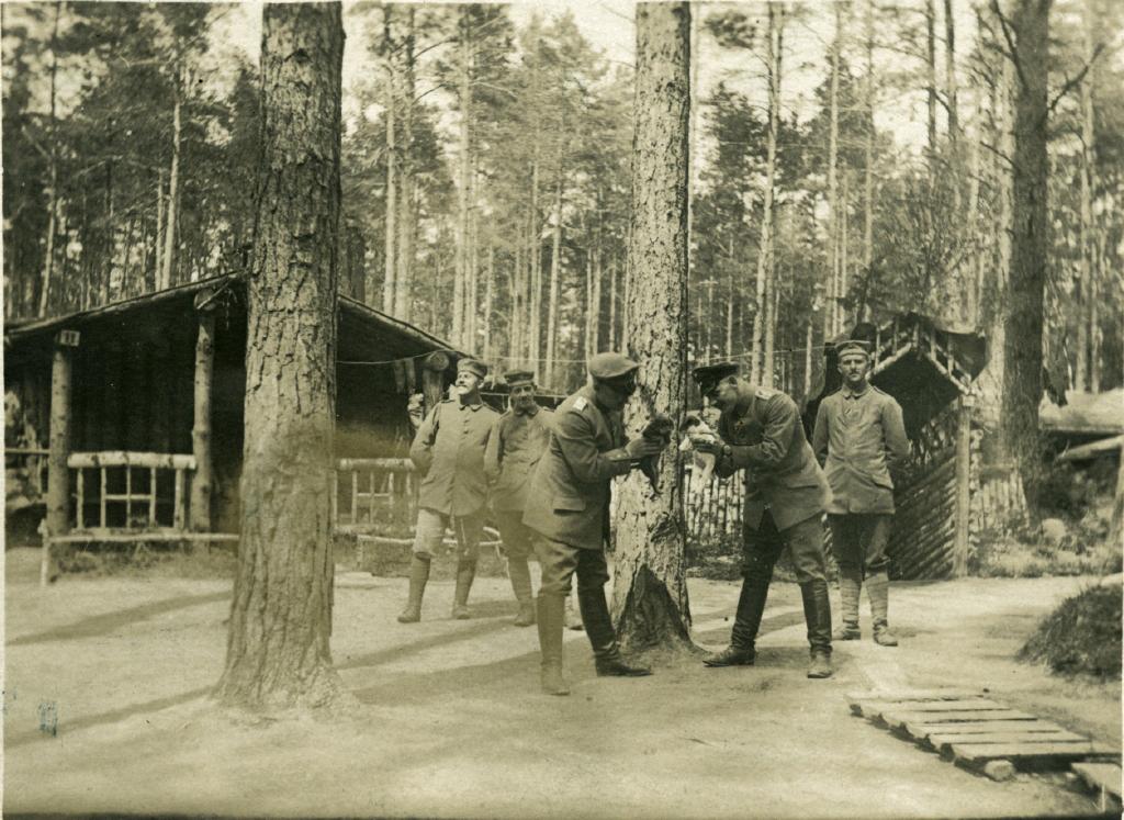1. april 1915. Forsvundne hundehvalpe ved Vladsloo