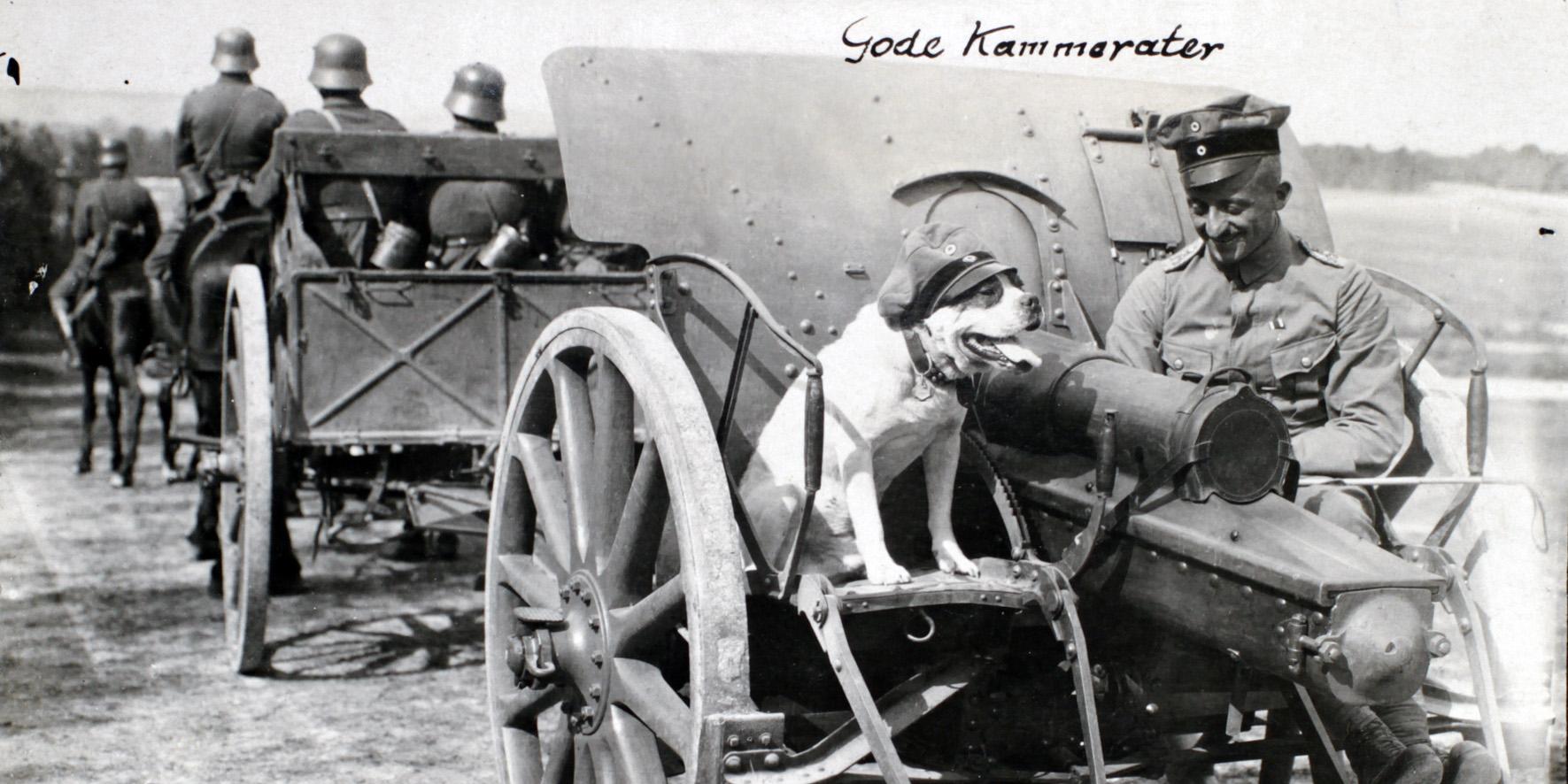 """Hjemmesiden """"Sønderjyderne og Den store Krig 1914-1918"""" runder tre år"""