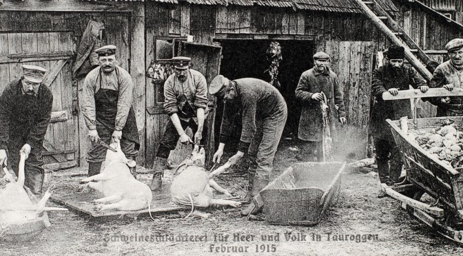 31. juli 1917. Held i uheld – og stegte æbler på træerne.
