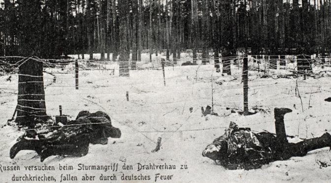 """20. juni 1917. Ved fronten i Galizien: """"Ligstanken var i første linje næsten ikke til at holde ud."""""""