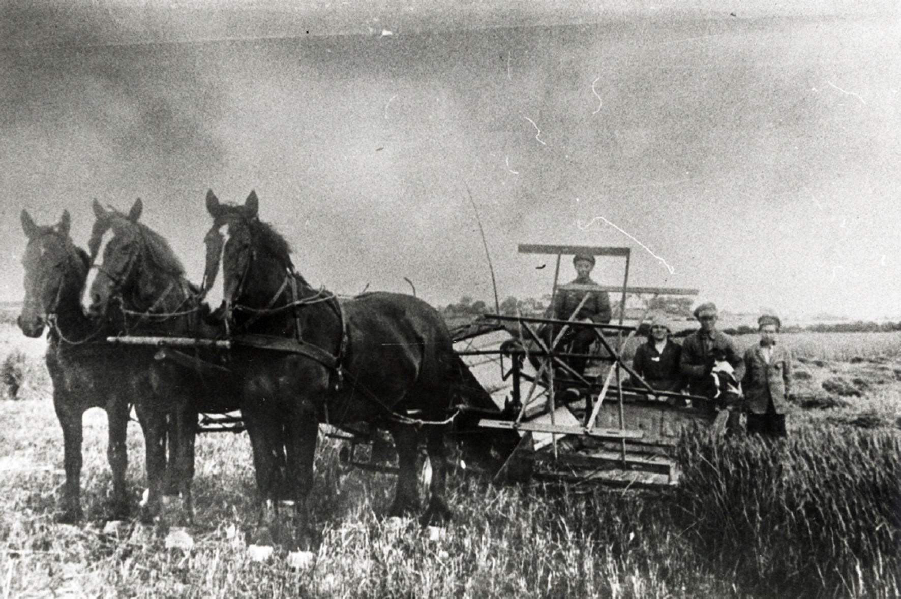 1. august 1914. Krigstilstand og mobilisering oplevet i Broager