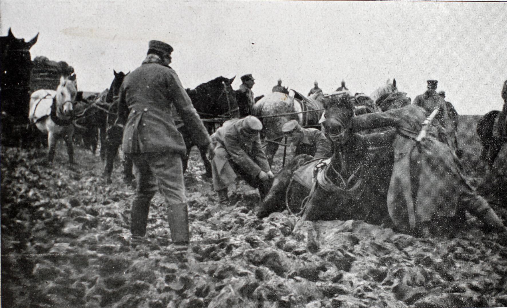"""23. august 1915. Med kolonnerne en regnvejrsdag i russisk Polen: """"Det hele var kørt fast!"""""""