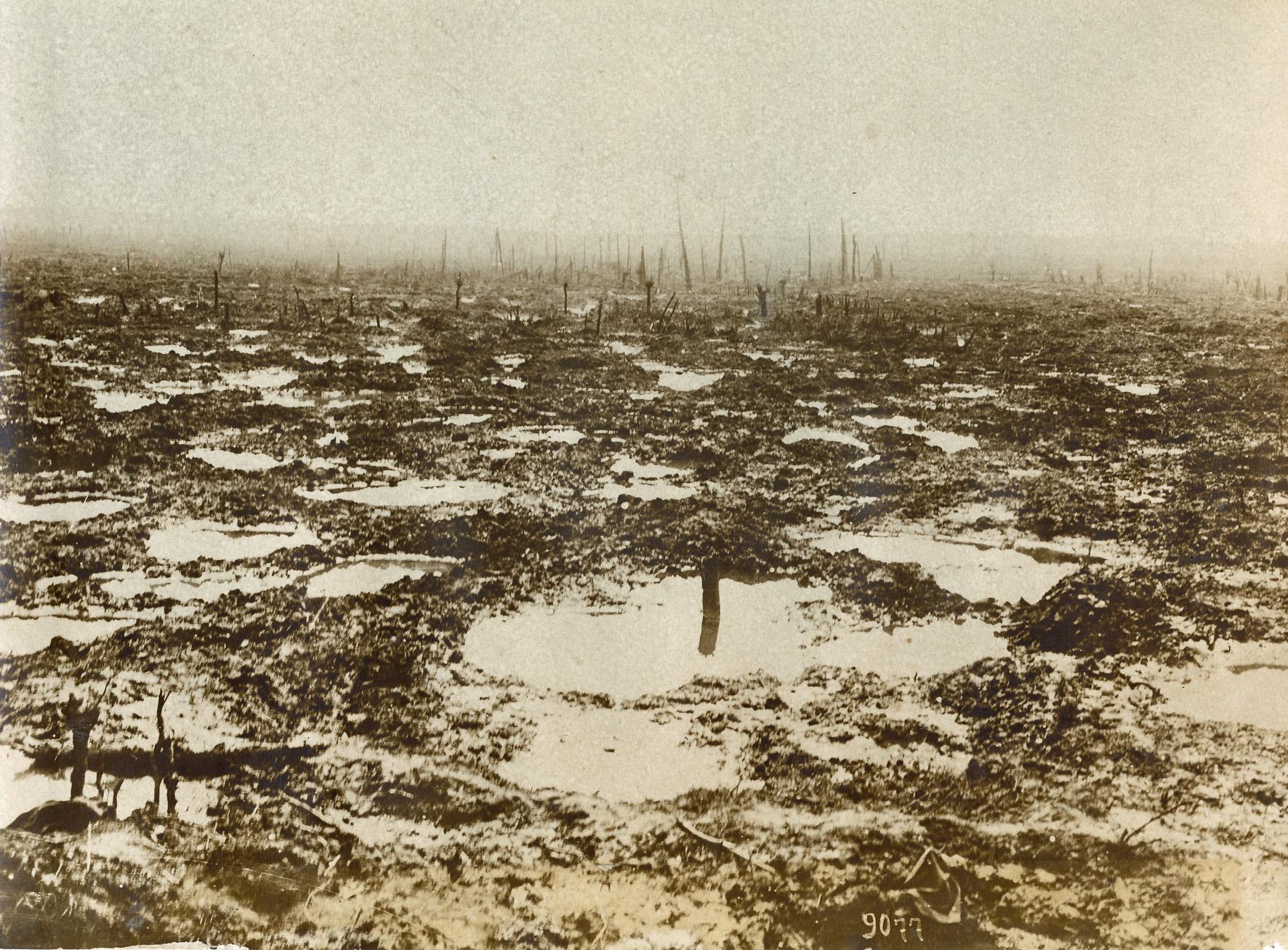 17. august 1917. Såret i ingenmandsland ved Ypres