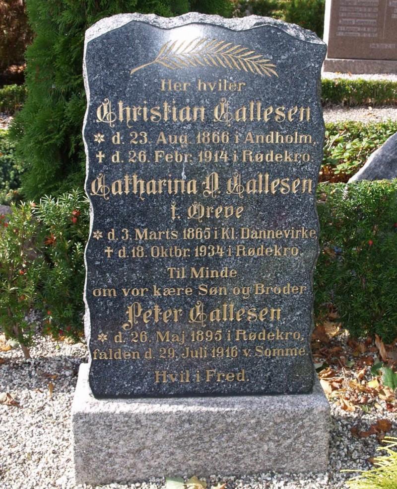 Gravsten på familiegravsted, Rise Kirkegård