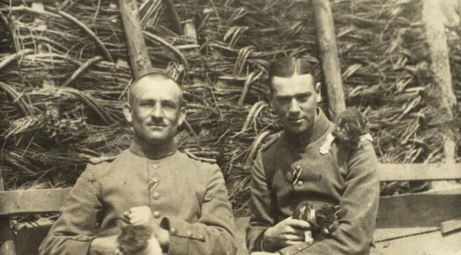 7. oktober 1916 – Fra billedsamlingen: Dyrehold
