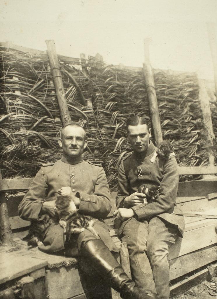 Officerer fra ukendt regiment fotograferet med en flok kattekillinger (Museet for Sønderborg Slot)