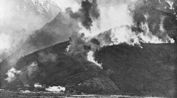 """24. oktober 1917 – Johannes Ankersen: """"ved 6-tiden åbnede tilintetgørelsesilden"""""""