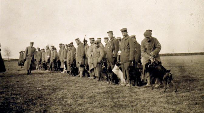 8. november 1917 – Danske officerer på vestfronttur: Krigshunde