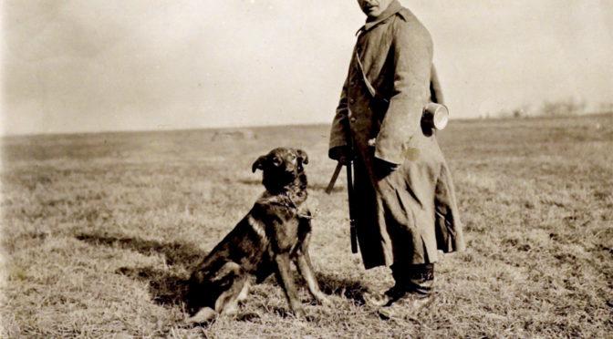 """20. juni 1918 – Flensborg Avis: """"Send derfor Hunde til Fronten"""""""