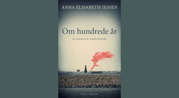 Ny roman om 100 års historie i Sønderjylland udkommer til januar 2019